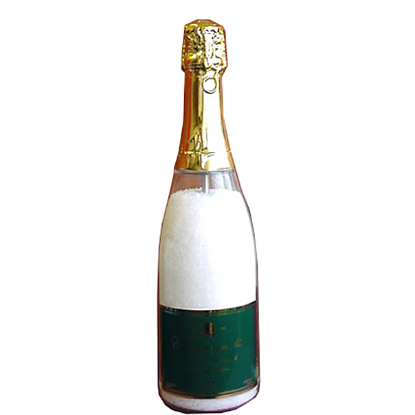 Champagne Accessories : Salt Mill Champagne Bottle
